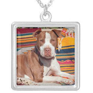 American Pit Bull lying on blankets Square Pendant Necklace