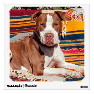 American Pit Bull lying on blankets Wall Sticker