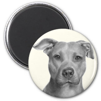 American Pit Bull Terrier 2 Inch Round Magnet