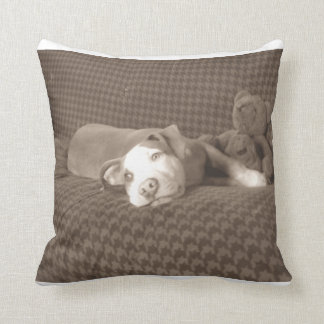 American_Pit_Bull_Terrier_and_teddy_bear_on_couch. Throw Pillow