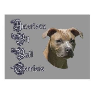 American Pit Bull Terrier (APBT) Postcard