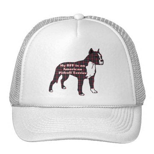 American Pit Bull Terrier BFF Hat