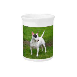 American Pit Bull Terrier Dog Drink Pitcher