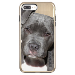Incipio DualPro Shine iPhone 7 Plus Case with Bull Terrier Phone Cases design