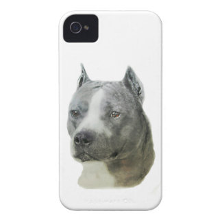 American Pit Bull Terrier iPhone 4 Case-Mate Case