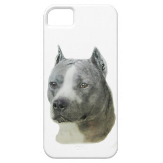 American Pit Bull Terrier iPhone SE/5/5s Case