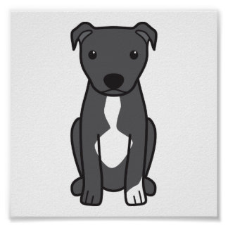 American Pit Bull Terrier (Natural Ears) Posters