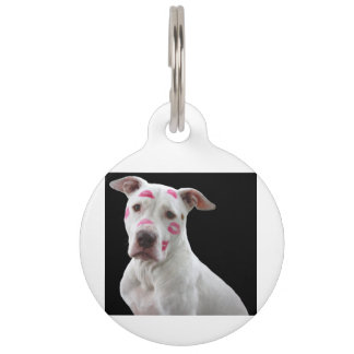 american pit bull terrier with kisses pet name tag