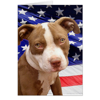 American Pitbull puppy Card