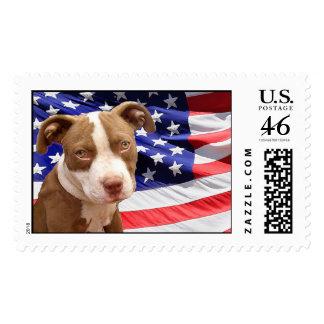 American Pitbull puppy Stamp