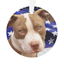 American Pitbull Terrier pup Ornament