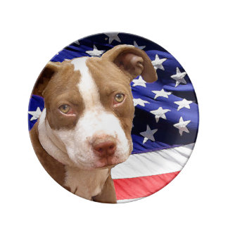 American Pitbull Terrier pup Plate