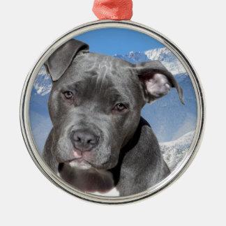 American Pitbull Terrier Puppy Dog Metal Ornament