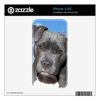 American Pitbull Terrier Puppy Dog iPhone 4S Decals