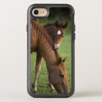 American Quarter horse mare and colt in field at OtterBox Symmetry iPhone 8/7 Case