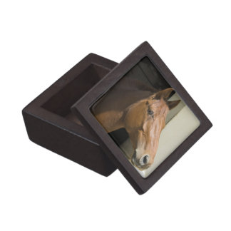 American Quarter Horse Premium Gift Box