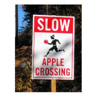 American Raodside Art Apple Crossing Postcard