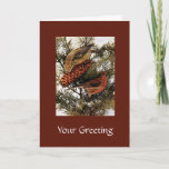 American Red Crossbill Birds on Winter Pine Tree