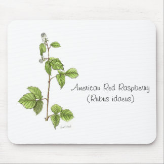 American Red Raspberry Plant Mousepad