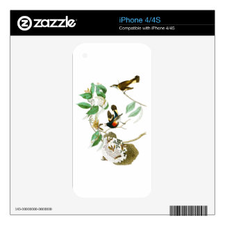 American Redstart John James Audubon Birds America Decal For iPhone 4S