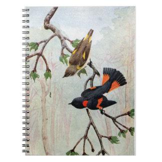 American Redstarts Eye Caterpillar Spiral Notebook