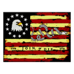 American Revolutionary Flag Poster