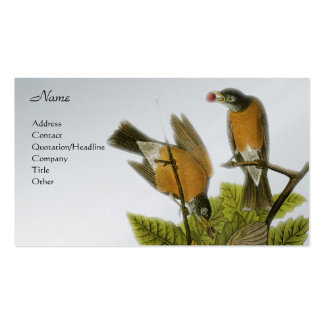 American Robin 2 Business Card