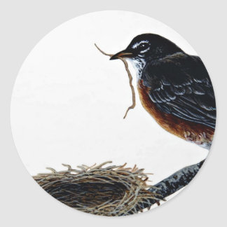 American robin building a nest classic round sticker