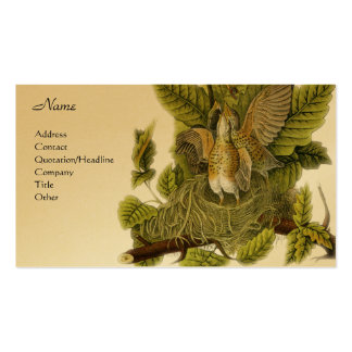 American Robin Business Card