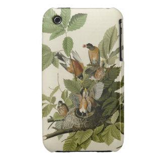 American Robin iPhone 3 Case