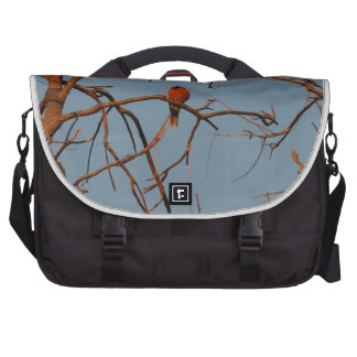 American Robin home to roost Commuter Bags