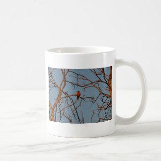 American Robin home to roost Coffee Mug