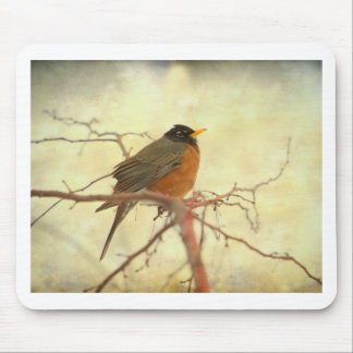 American Robin in The Springtime Mouse Pad