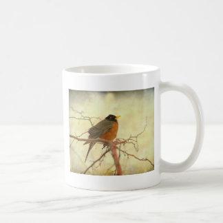 American Robin in The Springtime Mugs