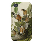 American Robin iPhone 4 Cases