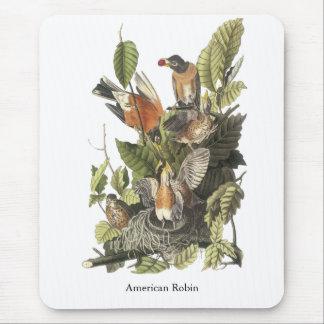 American Robin, John Audubon Print Mouse Pad