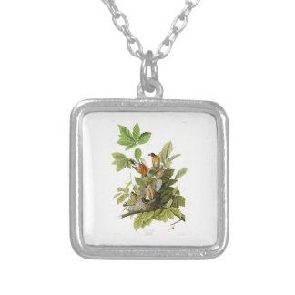 American Robin John James Audubon Birds of America Square Pendant Necklace