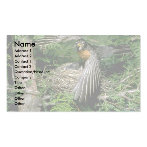 American Robin landing on nest Double-Sided Standard Business Cards (Pack Of 100)