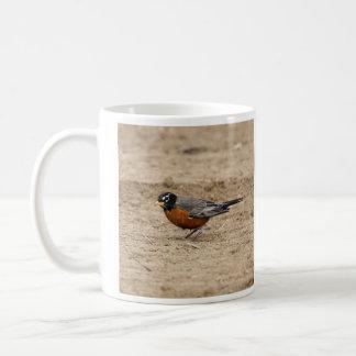 American Robin Mugs