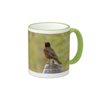 American Robin on a Cookie Jar Coffee Mug