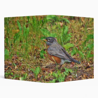 American Robin on the Grass 3 Ring Binder