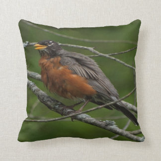American Robin Photo #2 Throw Pillows
