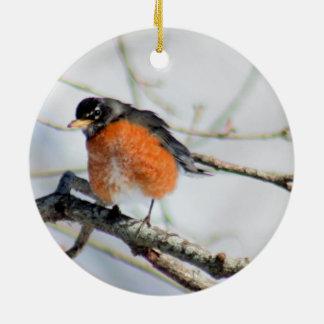 American robin photo ceramic ornament