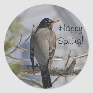 American robin photo classic round sticker