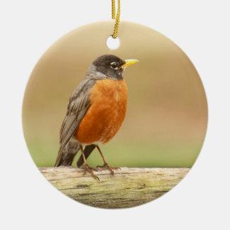 American Robin Standing Ceramic Ornament