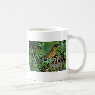 American Robin with young Coffee Mugs
