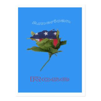 American Rose Postcard