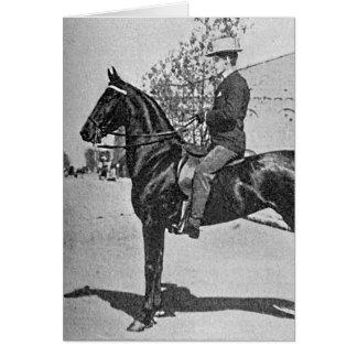 American Saddlebred Horse Vintage Photograph Card