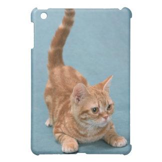American Shorthair 3 iPad Mini Case