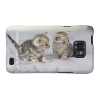 American Shorthair 7 Galaxy SII Covers